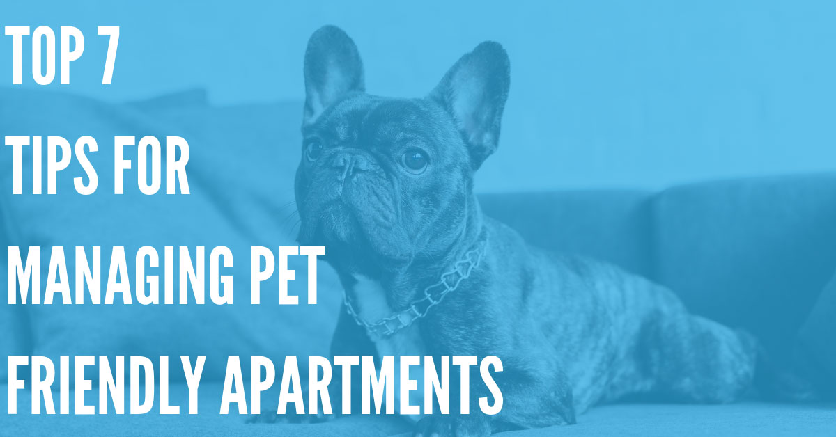Top 7 Tips for Managing Pet Friendly Apartments